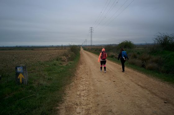 Camino de Santiago – Thinking on the road